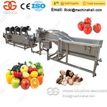 Commercial Popular Date Palm Cleaning Machine Price Processing Line