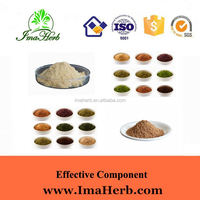 Factory Supply ISO Certified angelica plant extractligustilide1%-1.5% ferulic
