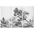 "Artistic Butterfly Orchid Photo Canvas Printing Flower Canvas Artwork Home Decoration(12""x24""x3Pcs)"