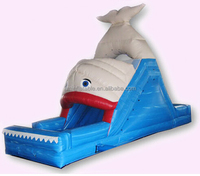 small whale Inflatable water slide