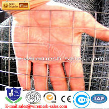 Hot sales 1/2 inch Galvanized welded wire mesh exported Sri Lanka
