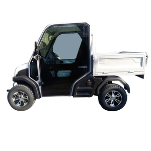 New Arrival right steering mini truck 2 seater electric car for sale