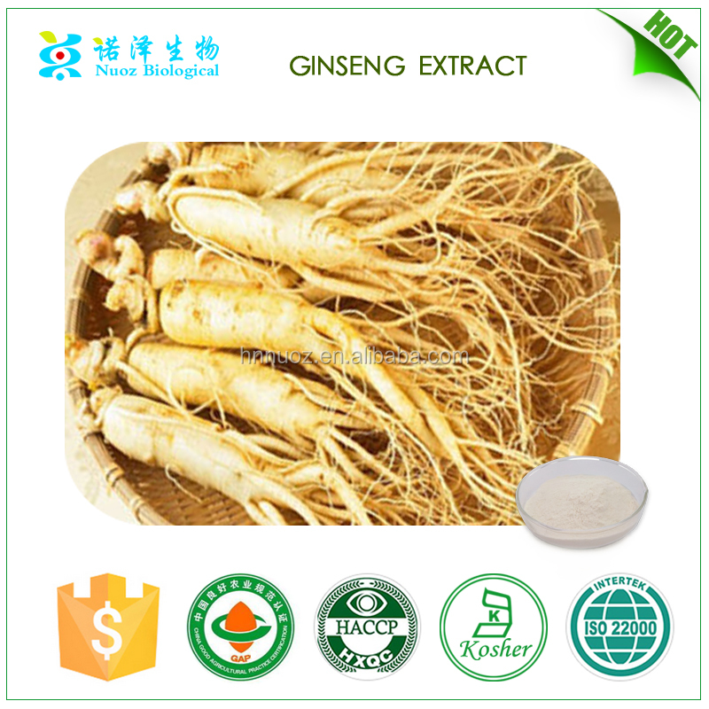 Factory wholesale panax ginseng root extract 10%-80% ginsenosides /FRESH WILD korean red Ginseng