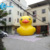 5M inflatable rubber duck,giant yellow inflatable floating duck for promotion