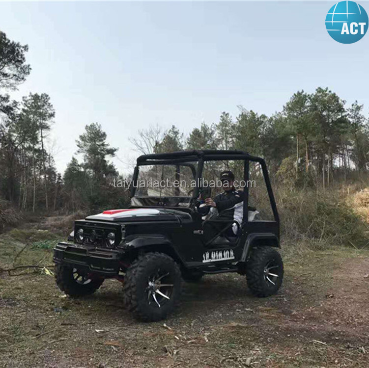ACT Chinese brand 250cc 4 wheeler atv chinese buggy for adults