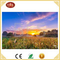 led beautiful rural scenery canvas painting for home decoration