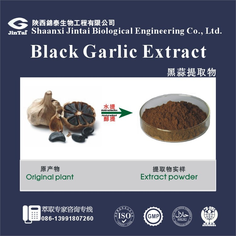 Brown fine powder 1% allicin Black Garlic Extract Powder free sample