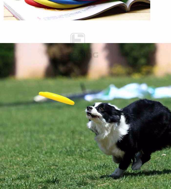 Гладкий прочный пищевой собака летающие диски игрушки силиконовая pet Фрисби