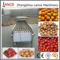 Professional citrus fruits sorting machine for date/walnut/haw/tomato/potato/orange with video