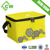 Eco-Friendly Non Woven Insulated Lunch Cooler Bag with Zero Degrees Inner Cool For Whole Foods