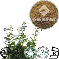 Pure Natural Chinese Sage Extract 4:1 10:1 CAS No.:8028-48-6