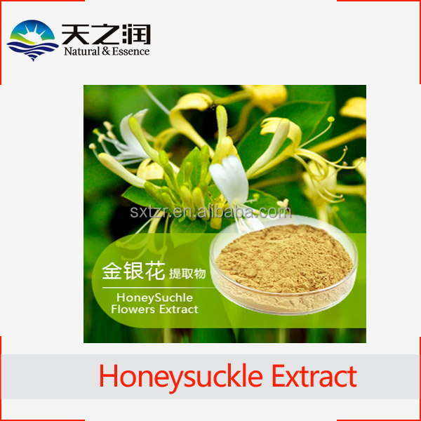 Natural HoneySuchle Flowers Extract