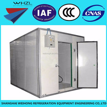 China Factory Low Temperature Cold Storage / Freezer Room Price For Sale