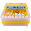 Plastic price poultry chicks with great price eggs hatching machine