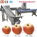Factory Price Apple Sorting Machine Peach Sorting Machine Fruit Sorting Machine
