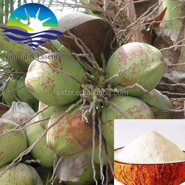 Freeze-dried organic coconut milk powder for juice