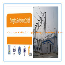 Electrical Overhead PE Insulated Cable AAC Conductor Duplex Service Drop