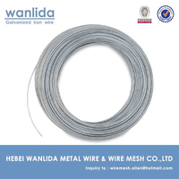 Anping factory galvanized wire for paper clip ( BV Certification )