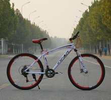 mountain bicycle/gift bike /cheap mountain bicycle