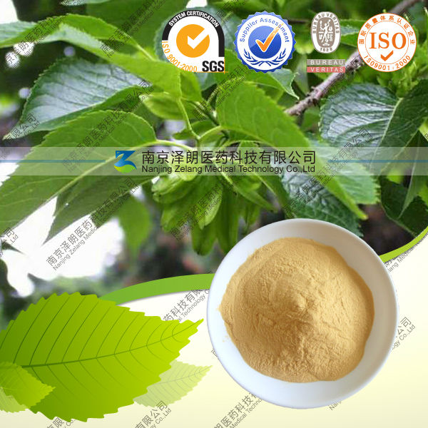 Chinese rubber tree extract