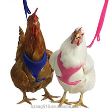 ISO9001 certificate factory china supplier wholesale pet chicken harness