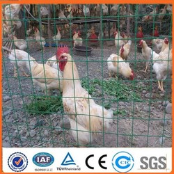 Garden style security euro fence panel(ISO9001 ceitification)