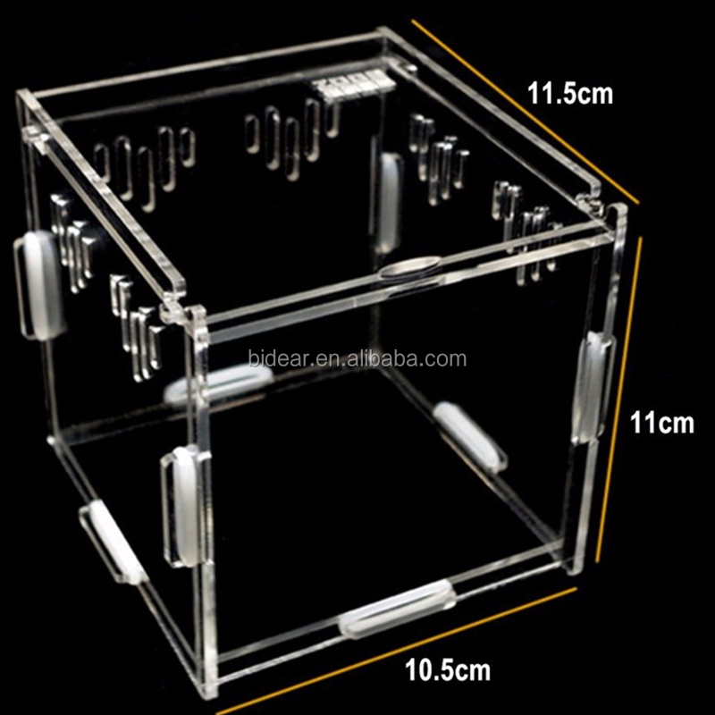 Best Selling Assembled Acrylic Small Reptile Insect Cage