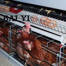 Chicken Breeding Cage/Uganda Poultry Farm Automatic Chicken Layer Cage/Chicken Wire Cage Mesh