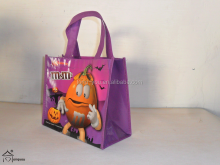 reusable folding shopping bag/eco friendly shopping bag/non woven shopping bag