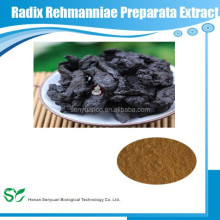 GMP & Kosher manufacturer supply 100% natural Radix Rehmanniae Preparata P.E.