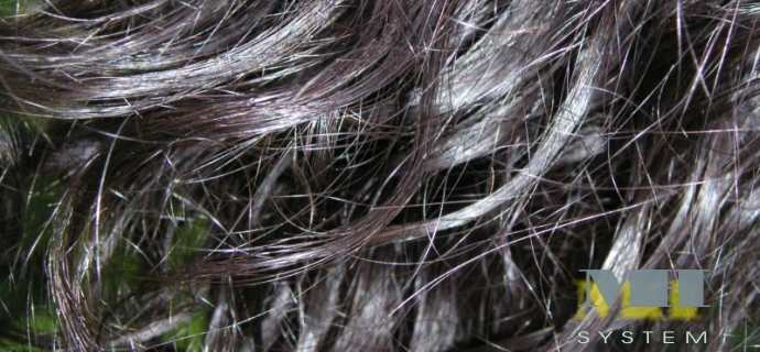 Wefts Human Hair (in Strip For Extension Curtain System)