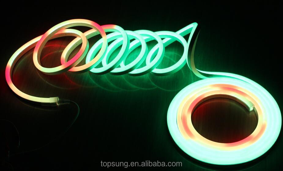 Chasing neon Flex (1).jpg