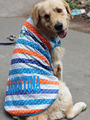 Hot-selling clothes for dogs striped colorful vest/tank tops for large dogs