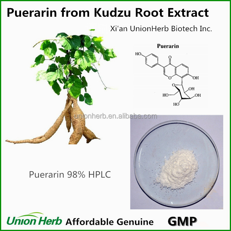 High Purity Puerarin from Kudzu Root Pueraria Extract