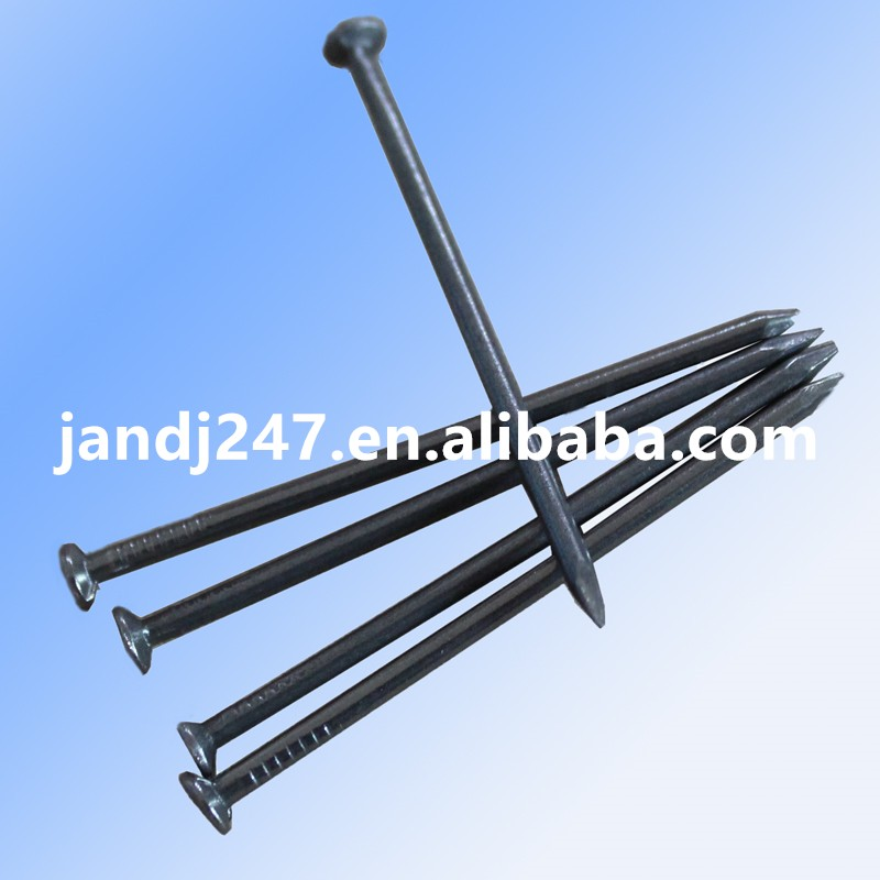 Common Nails, Iron Wire Nails with Factory Price