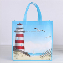 Promotional Reusable Custom Printing Eco-friendly Laminated PP Non-woven Shopping Bag