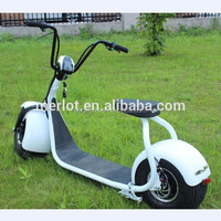 ML-SC 2 wheel standing up adult electric scooter tricycle