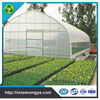 PE Film Commercial Tunnel Greenhouses For