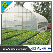 PE Film commercial Tunnel Greenhouses for sale