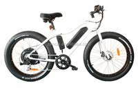 High power ebike An electric racing bike Well selling bicycle online