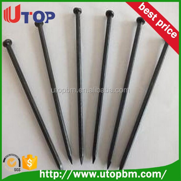 Common iron nails / hardened steel concrete nails