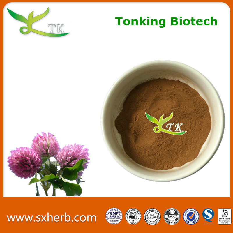 Tonking supply natural red clover extract powder