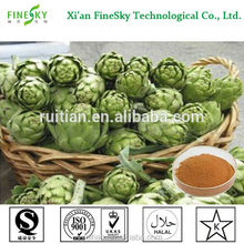 Health raw material Artichoke Leaf Extract, artichoke extract powder