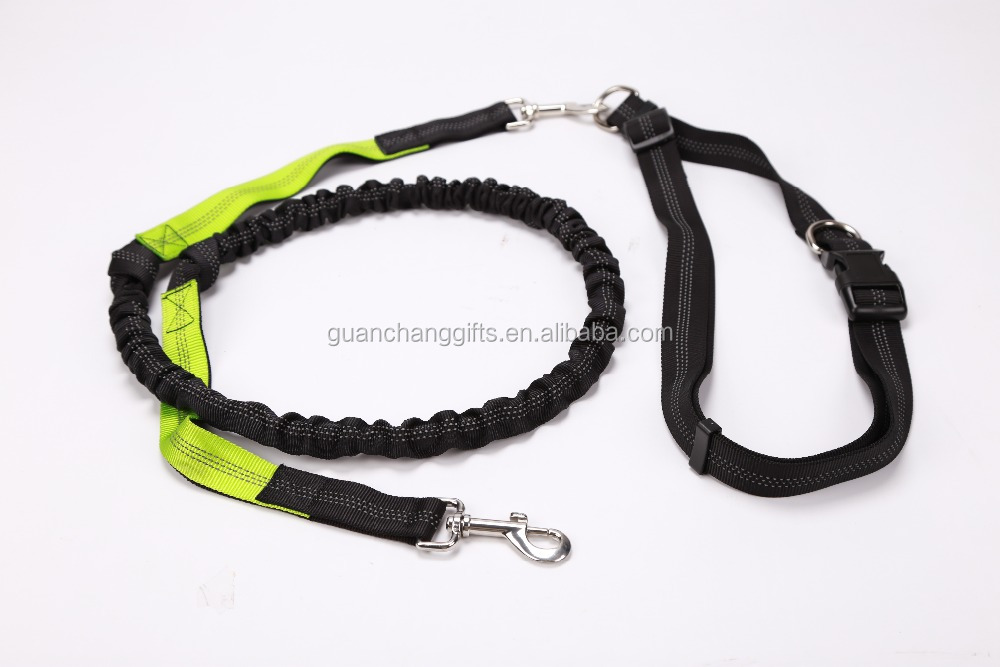 high quality promotional smart nylon dog leash glow in the dark leash
