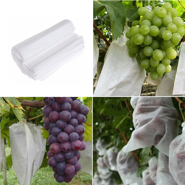 plant cover, PP non woven fabric cover pp spunbond nonwoven plant cover