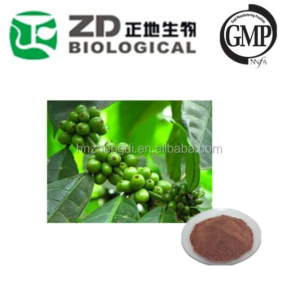 chinese Green coffee bean extract Chlorogenic acid powder 50% fat burner natural product