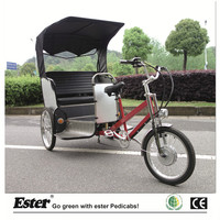 Battery Powered Electric Passenger Tricycle