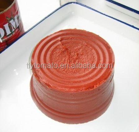 2.2kg 2016 canned tomato paste with plastic cover