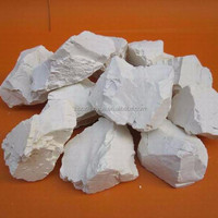 Calcined China Fire Clay Refractory Chamotte