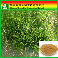 Gmp Factory Price Organosilicone Horsetail Herb Extract/High Quality Horsetail Herb Extract,2% 7% 12% Silica Acid Horsetail Her